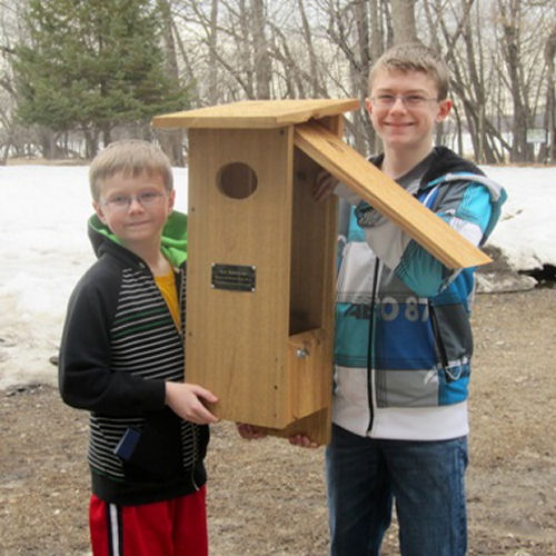 Nestbox Plans For Large Birds